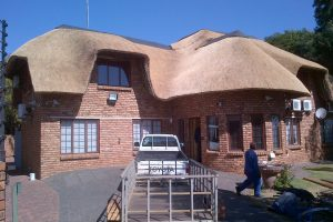 About lapas and thatching